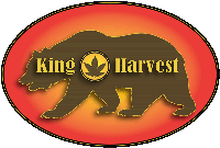 king harvest medical cannabis